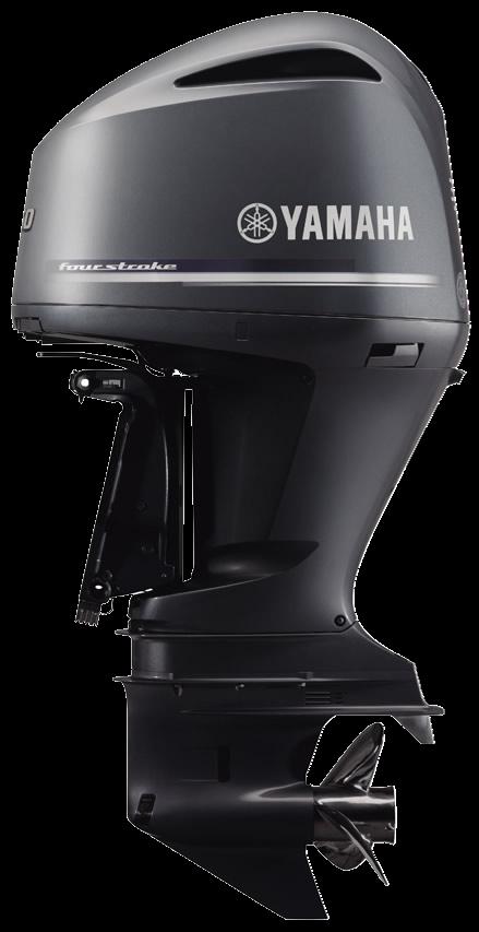 Yamaha F250 - 250.1