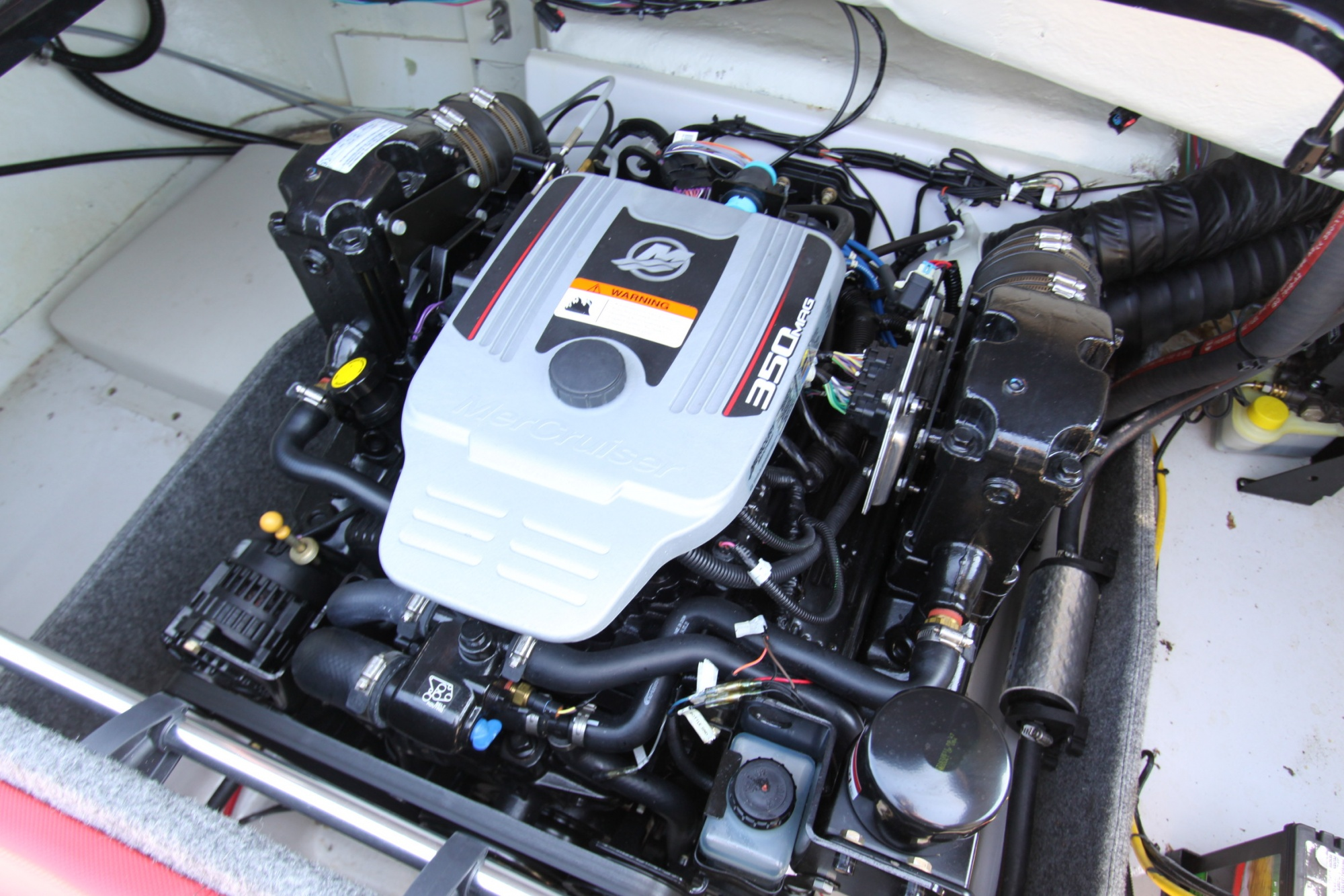 Glastron GTS 225 - IMG_6766