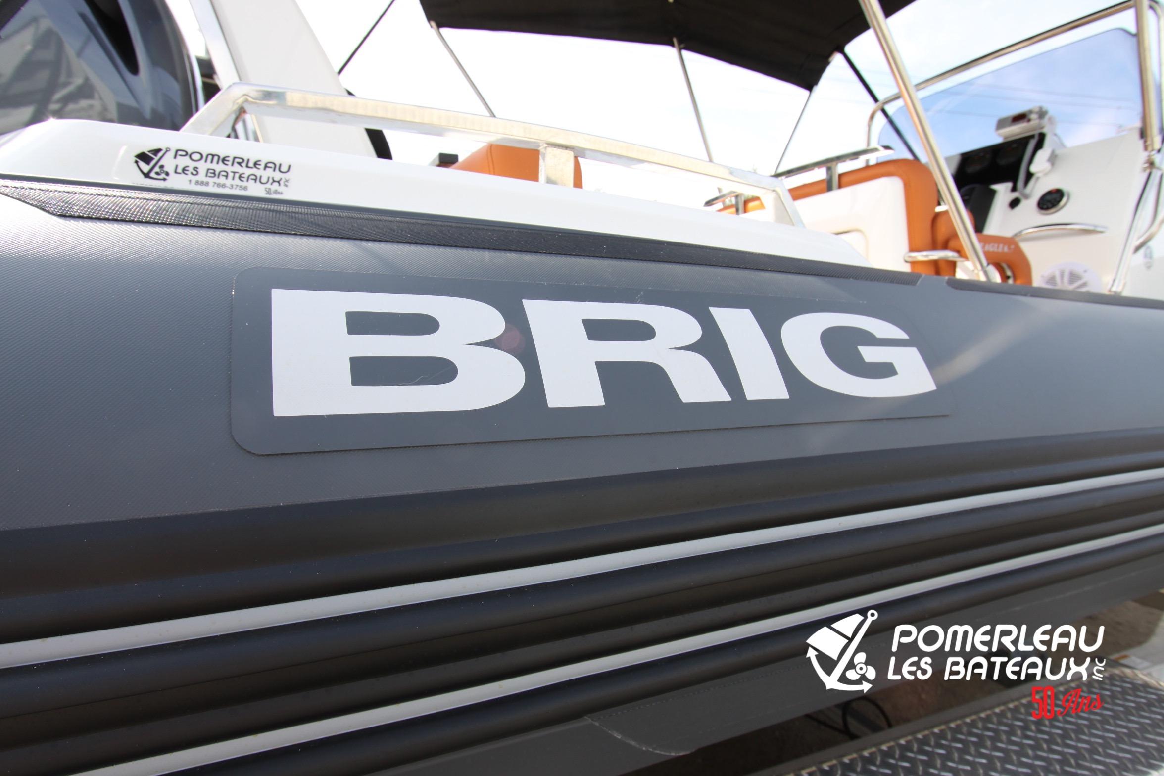 Brig Eagle 650 - IMG_7758.