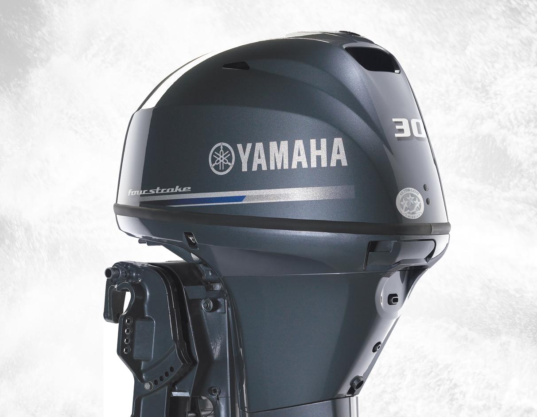 Yamaha F30 - 30.1