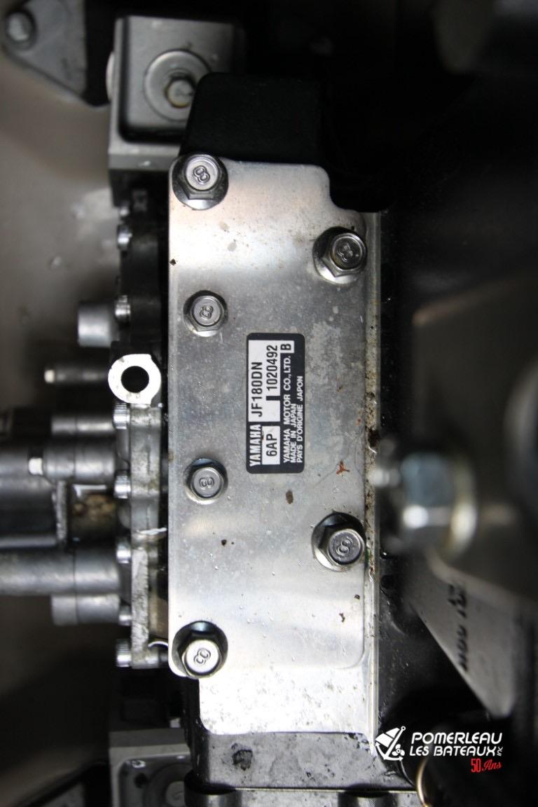 Yamaha AR 242 Limited S - IMG_0305