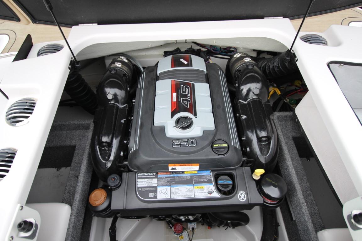 Glastron GT 205 - IMG_8514 (Moyen)