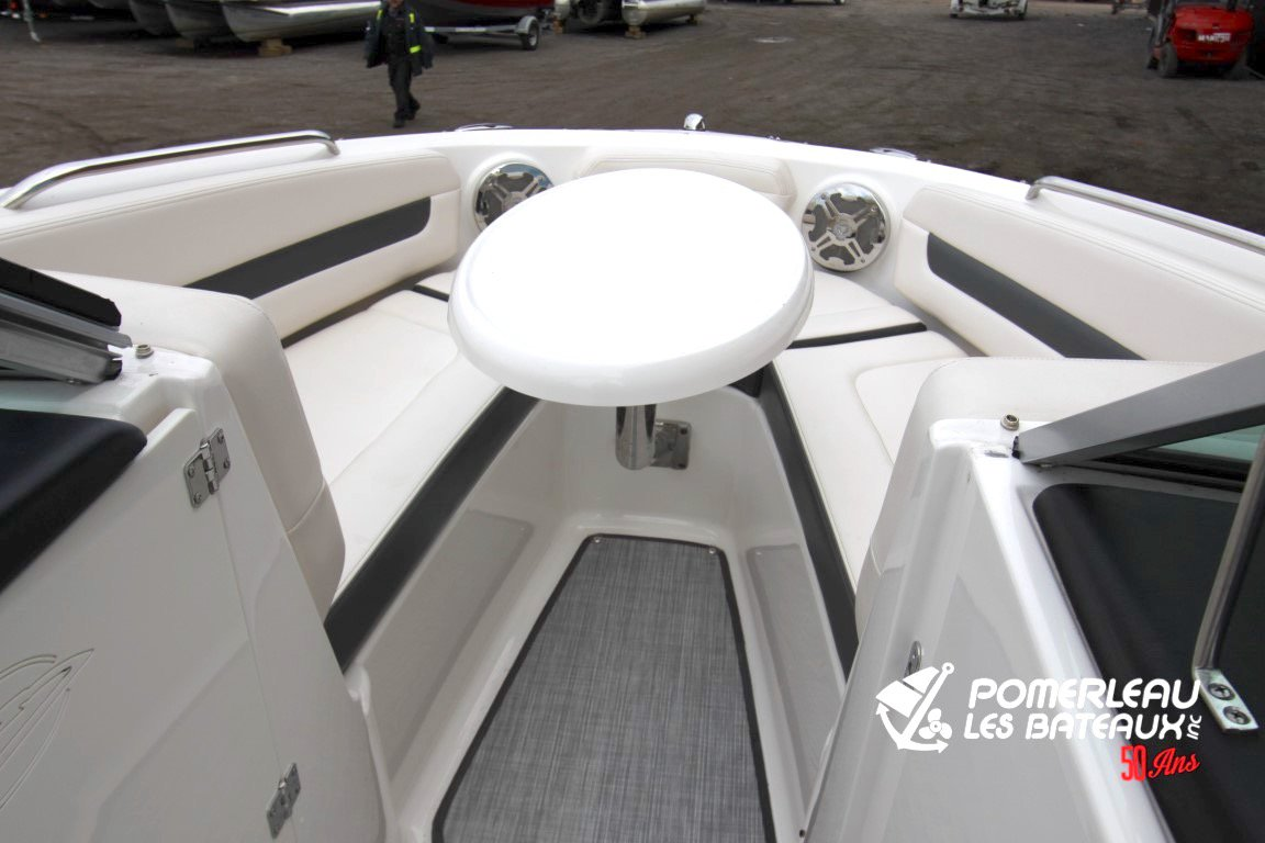 Chaparral 216 SSI - IMG_6392