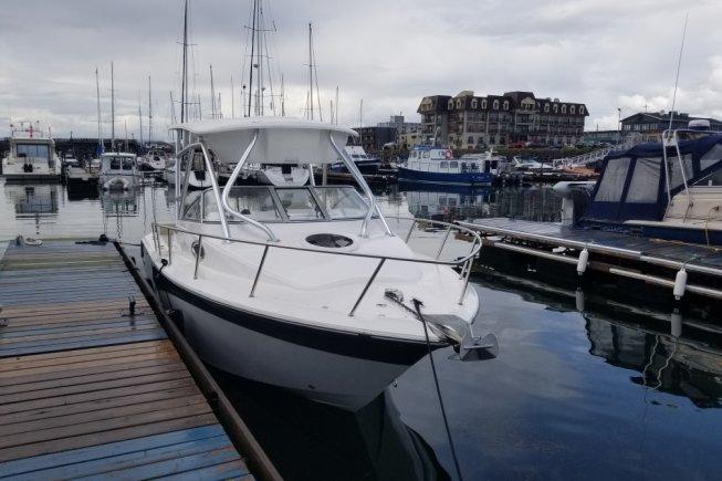Sea Fox 256 VOYAGER