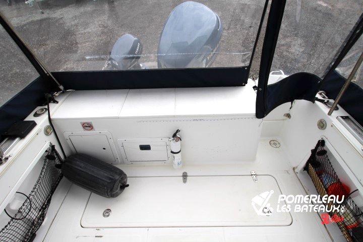 Sea Pro 250 Walkaround - IMG_4308