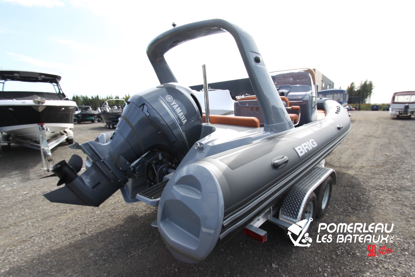 Brig Eagle 650 - IMG_2234