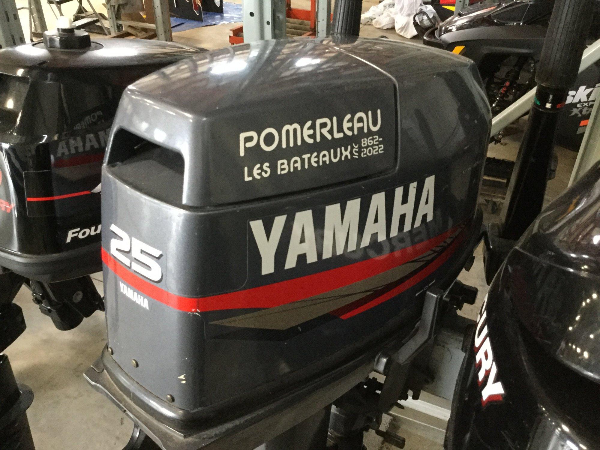 Yamaha 25 Tiller - IMG_1643