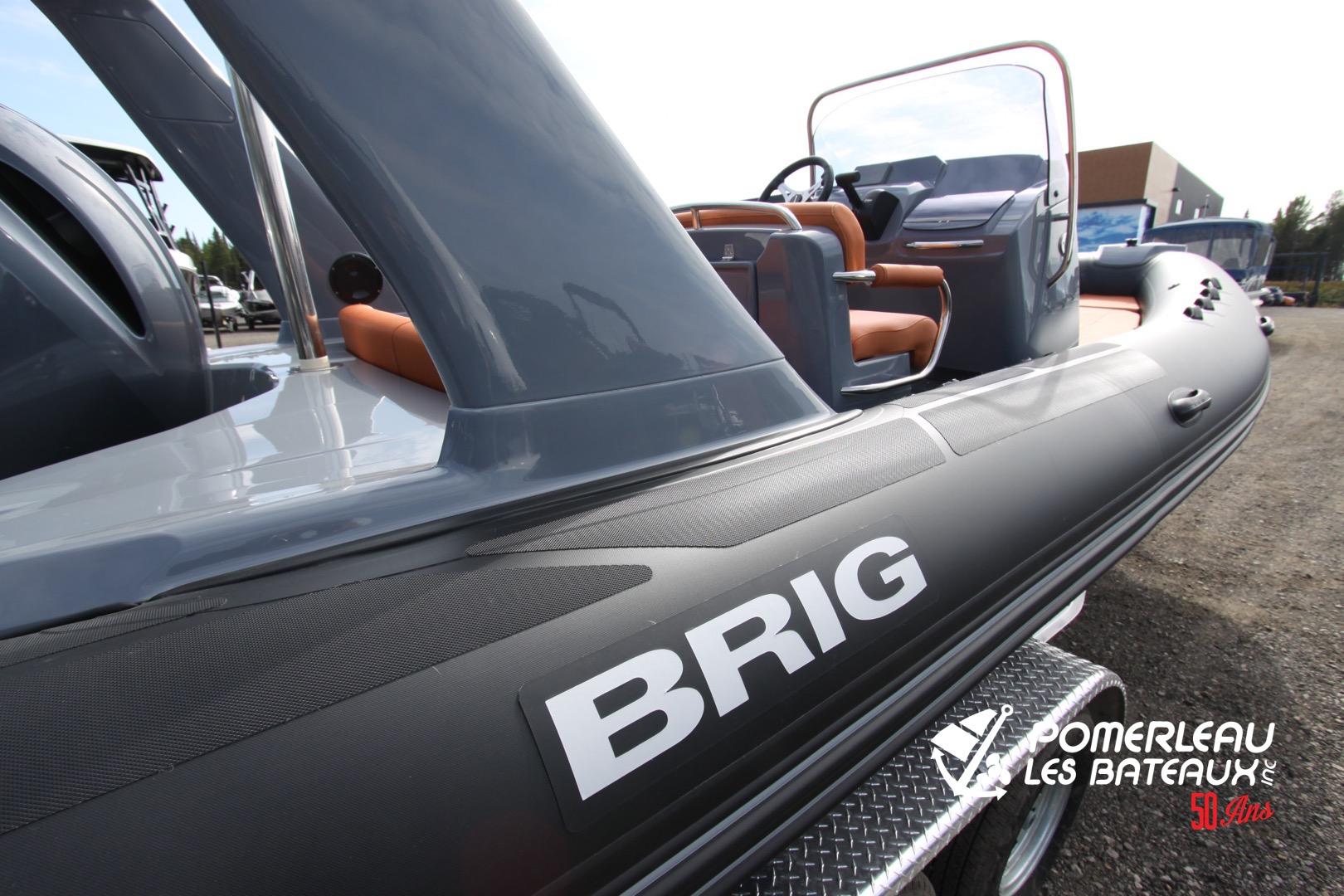 Brig Eagle 650 - IMG_2235