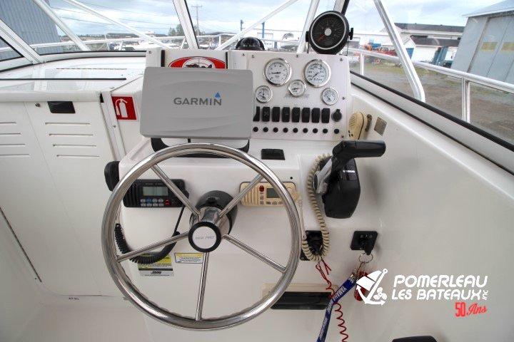 Sea Pro 250 Walkaround - IMG_4313