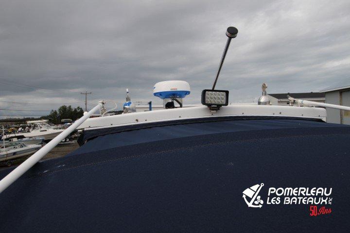 Sea Pro 250 Walkaround - IMG_4302
