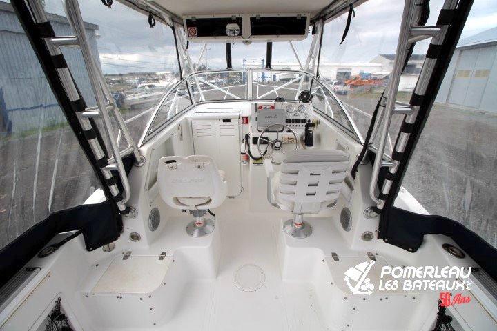 Sea Pro 250 Walkaround - IMG_4303