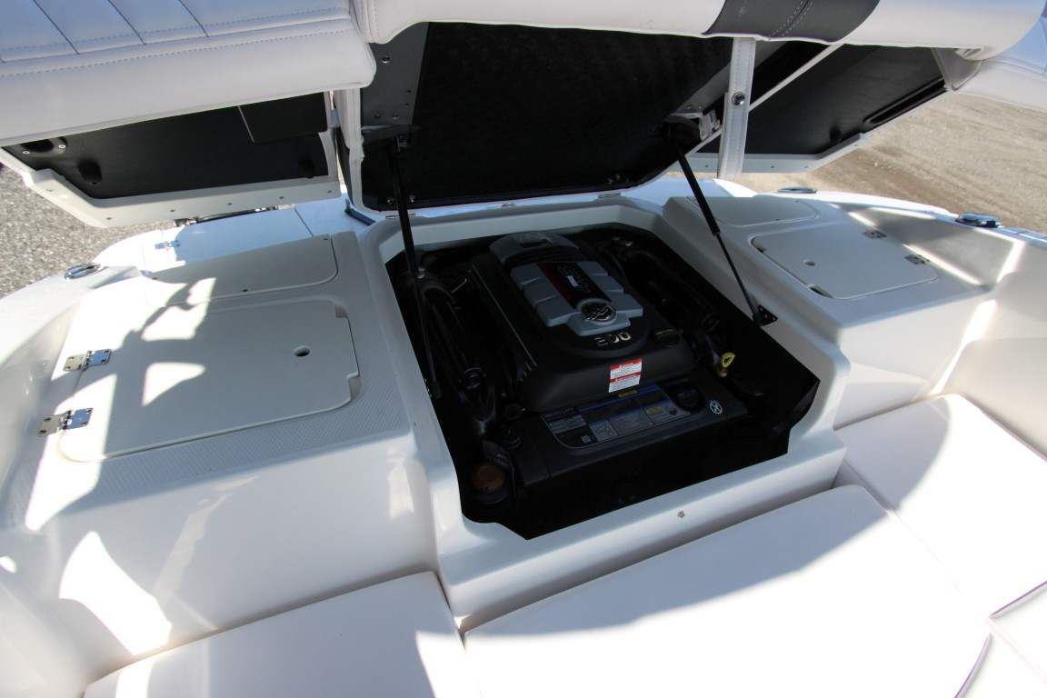Chaparral 19 SSI - IMG_1822