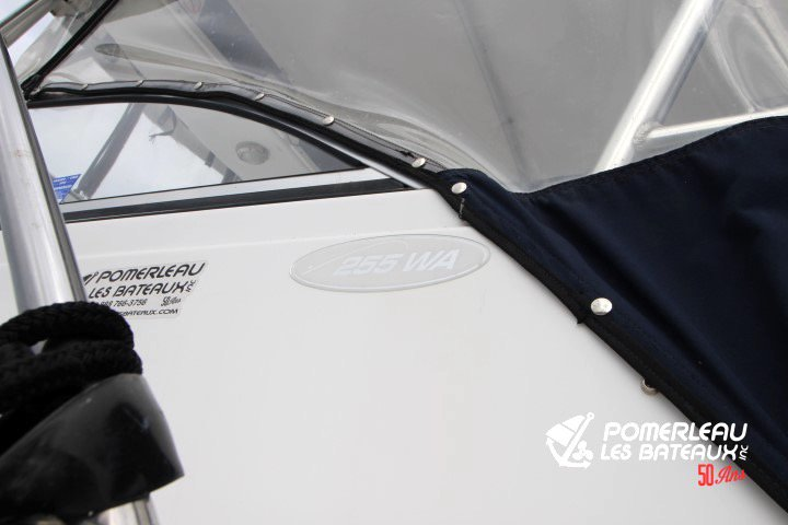 Sea Pro 250 Walkaround - IMG_4299