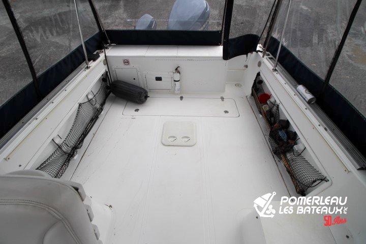 Sea Pro 250 Walkaround - IMG_4304