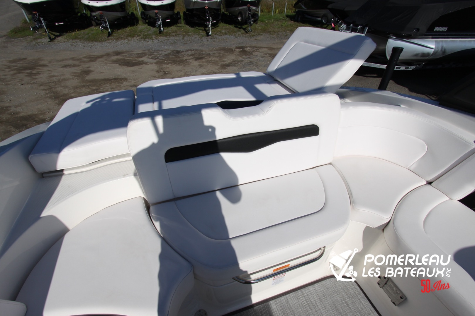 Chaparral 246 SSI - IMG_2131